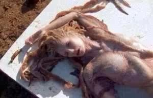 WADOO!!DEAD MERMAID SPOTTED AT A POPULAR BEACH IN BENIN REPUBLIC [PHOTO]